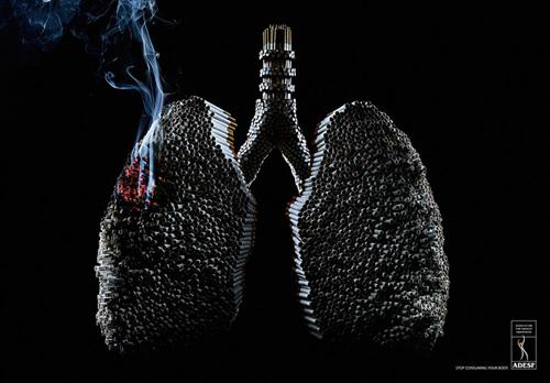 8-Associação-de-Defesa-da-Saúde-do-Fumante-ADESF
