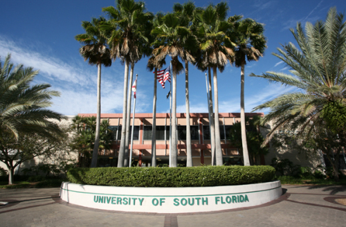 university-of-south-florida-master-in-public-health