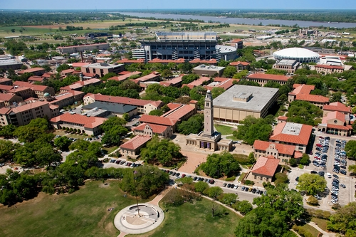 louisiana-state-university-flores-mba-in-healthcare-management