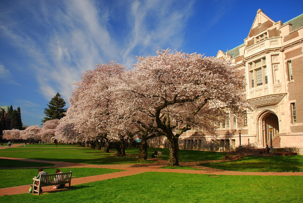 University of Washington – Seattle Campus