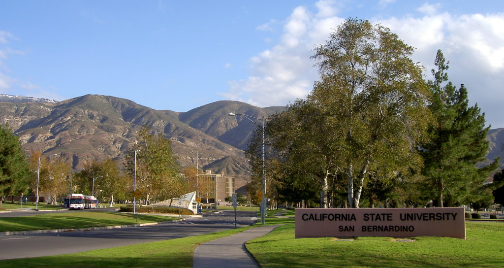 california-state-university-san-bernardino-bachelor-of-science-in-bioinformatics