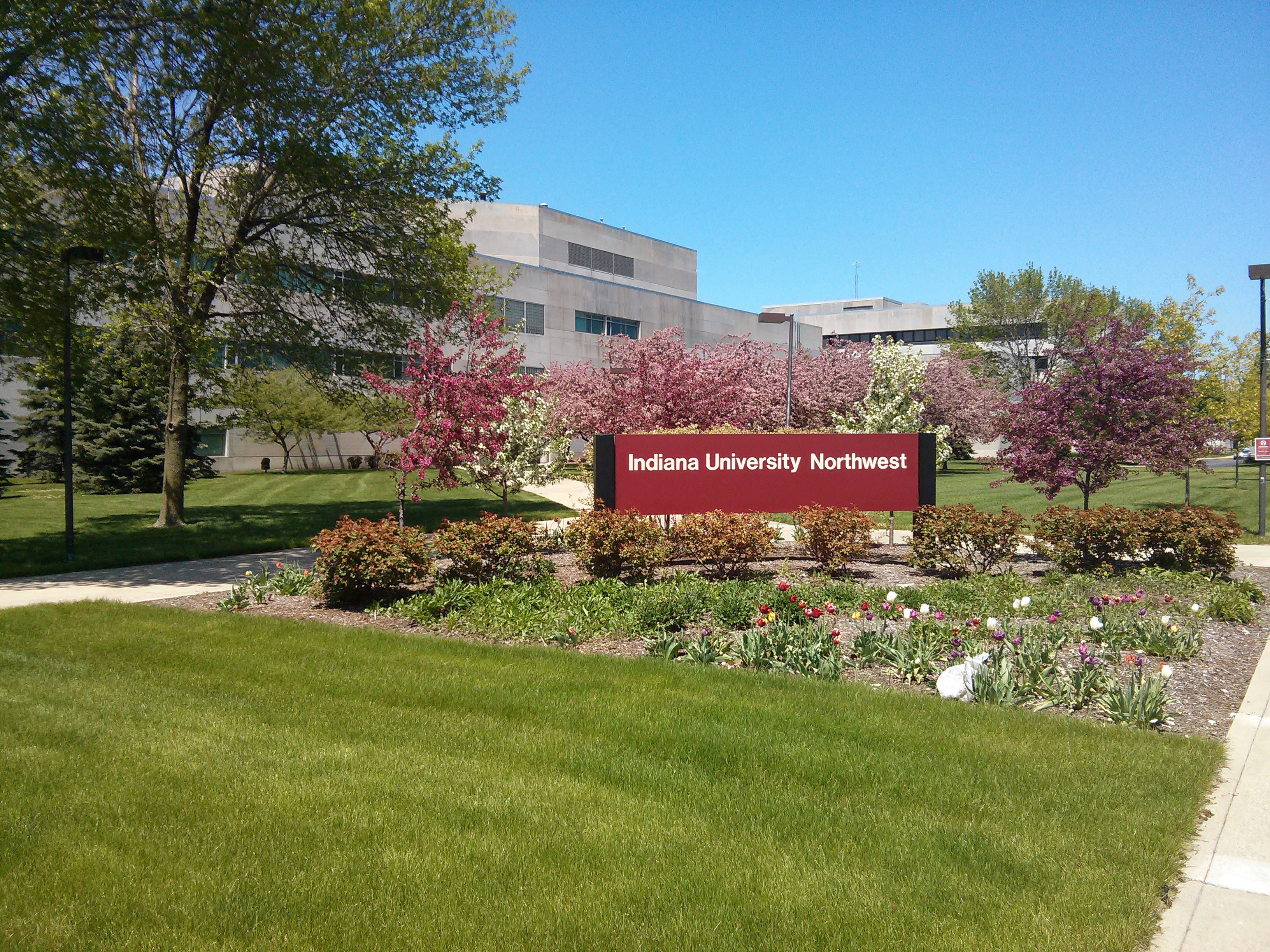 indiana-university-northwest-bachelor-of-science-in-bioinformatics