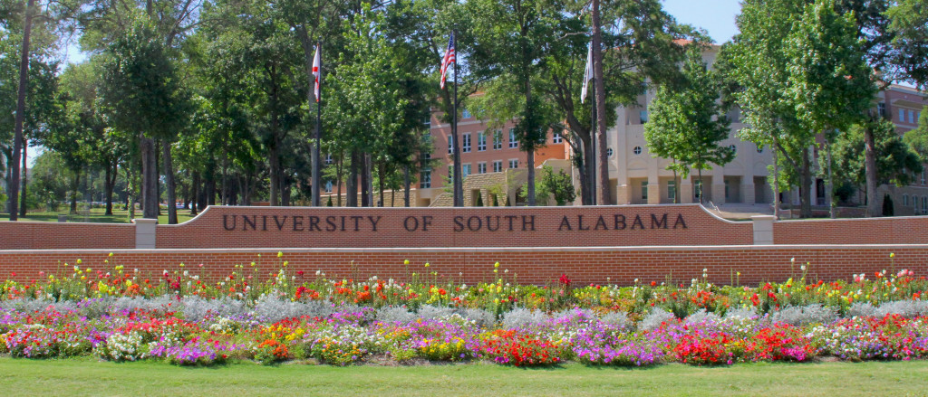 university-of-south-alabama-bachelor-of-science-in-health-informatics