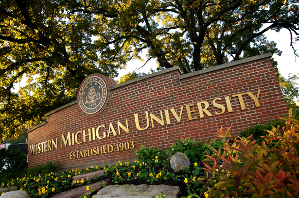 western-michigan-university-bachelor-of-science-in-health-informatics-and-information-management